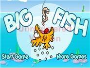 Big Fish Ocean
