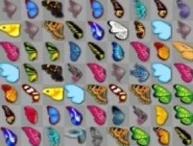Farfalle Kyodai
