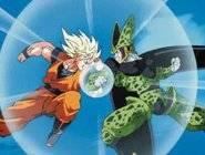 Dragon Ball Z Combat