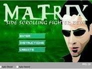 Matrix Fighter