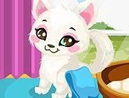 Precious Kitty Care
