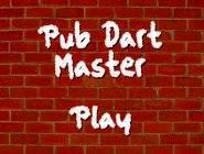 Pub Master Darts