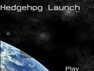 Hedgehog Launch