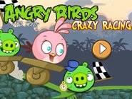 Angry Birds Crazy Racing