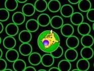 Pikachu Ball