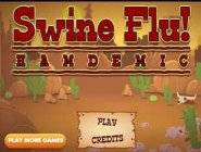 Swine Flu Hamdemic