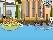 Dauphin et de Requin