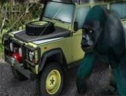 Parking Zoo