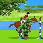Horse.Ru Show Jumping Training