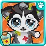 Puppy Doctor App