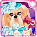 Pet Puppy Grooming App