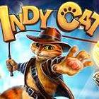 Indy cat on Playhub