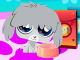 Animal shelter decoration free game at for Animal decoration games