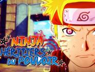 Ninja héritiers du pouvoir