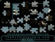 Jigsaw Puzzlee