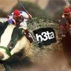 Badger racing