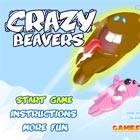 Crazy Beavers