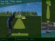 Flash golf