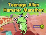 Hamster marathon