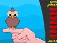schoner Vogeln