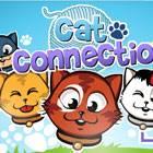 Cat Connection